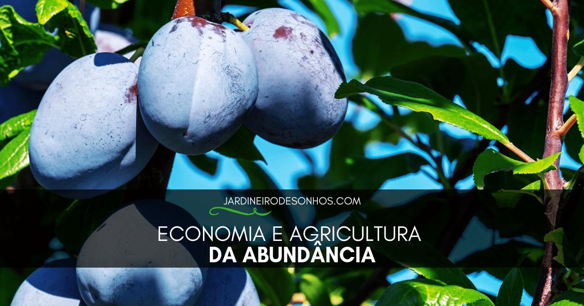 Economia e AgriEconomia e Agricultura da Abundânciacultura da Abundância